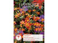 Ludescher Stephan Gärtnerei + Floristik