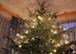 Fröhliche Weihnachten! Wir sind täglich für Sie da!
