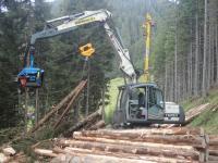 Holzarbeiten in Piesendorf