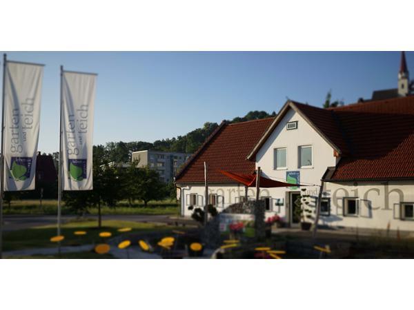 Online Chat & Dating Thalheim bei Wels | Lerne Mnner