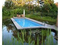Pool mit Biotop