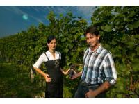 Das Winzerehepaar Gabriela und Ferdinand Krenn
