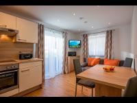 Haus Feichtner Sonnbichl 17 Soell Appartement neu Wohnkueche