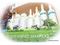 O'Right Das grünste Shampoo der Welt