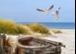 Betriebsurlaub vom 25. August bis 03. September 2015