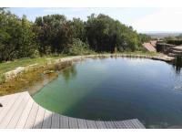 Schwimmteich in Feuersbrunn am Wagram