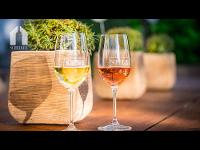 SCHEIBER Wein für Weinliebhaber