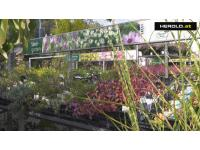 Sulzenbacher Der Gartengestalter