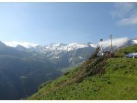 Holzschlägerung, -seilung und Prozessorarbeit im steilen Gelände, Almgebiet auf 2.000 m Seehöhe