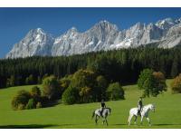 Auf dem Rücken der Pferde liegt das Glück dieser Erde