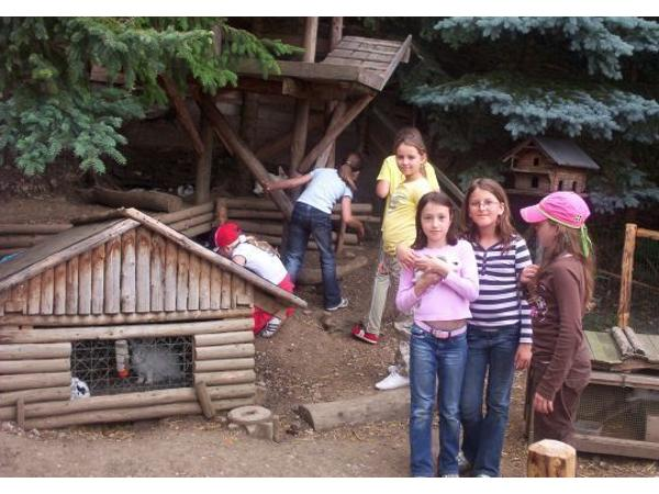 Vorschau - Foto 7 von Aktiv Camp Purgstall Camping- & Ferienpark