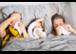 Allergien durch Wohnraumlüftung??