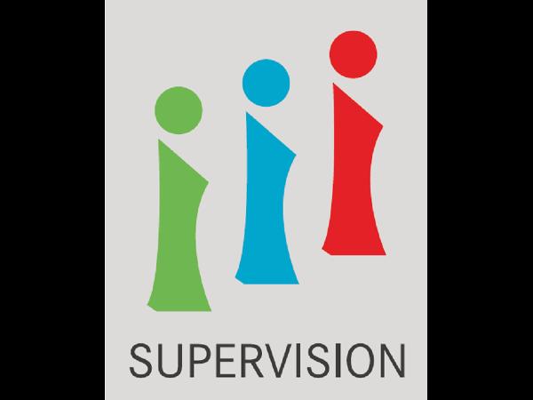 Expertenpool Supervision