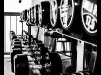 Auswahl Trainingsgeräte