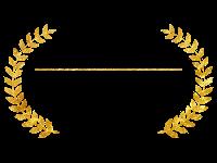 Int. Advisory Experts Awards Winner 2019