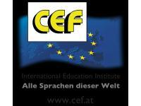 Institute CEF - International Education Institute