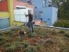 Leckortung auf einem Gründach