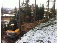 Kogler Forstarbeiten, Erdbewegung, Winterdienst
