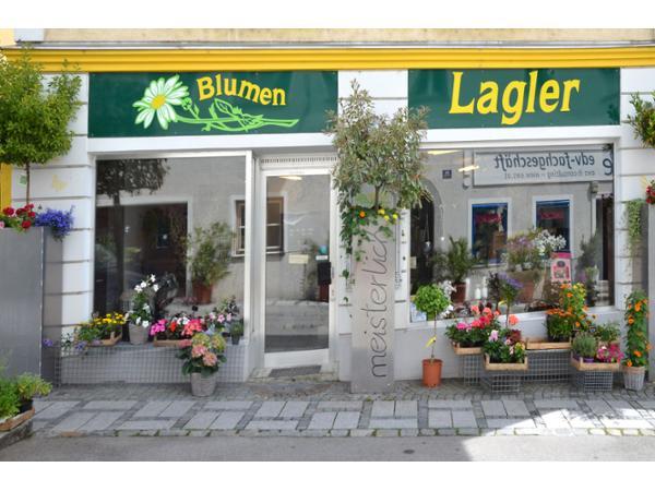 Vorschau - Foto 1 von Lagler Blumen