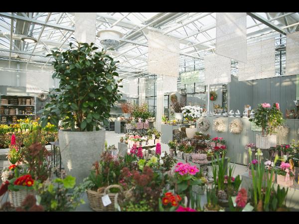 Vorschau - Saisonhaus