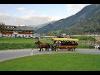 Thumbnail - Kutschenfahrt - Bachmayerhof All-Inclusive Zillertal