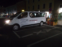 Taxibus für 8 Personen