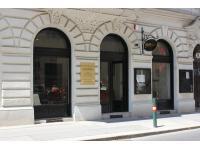 Blue Danube Violins GmbH - das Geschaeftslokal in der Strozzigasse 31, 1080 Wien