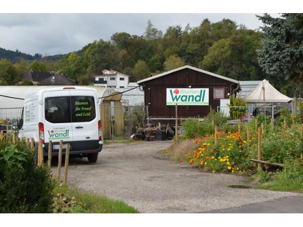 Gartenbau Linz manfred wandl gartenbau e u 4040 linz gärtnerei herold at