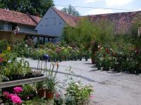 Ecker Baumschule und Gartengestaltung