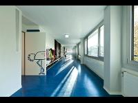 Linoleum - Bodenleger Meisterbetrieb