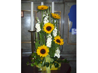 Gesteck mit Lefkojen und Sonnenblumen