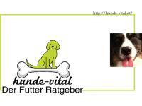 Verein: hunde-vital - Der Futter Ratgeber