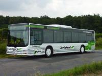 Regional-Linienbus