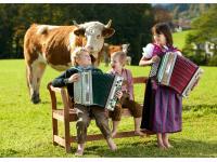 Alles rund um die Steirische Harmonika