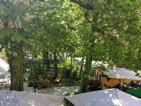 Gastgarten 2