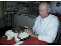 Tierarzt und Biologie Herbert Schramm