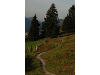 Thumbnail - Der Weg ist das Ziel