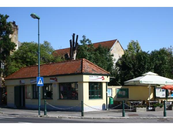 Single Wohnung in Laxenburg mit Balkon - Mietwohnungen