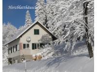 Herzblatt im Schnee