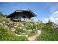 Alpenblumengarten