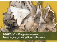 Maitake (Klapperschwamm)