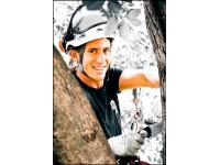 TreeBee Iring Süss - Höhenarbeit