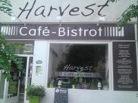 Harvest the vegetarian Bistrot