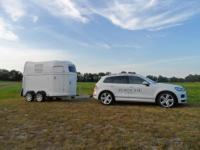 WESTFALIA Pferdeanhängerverleih + Transport