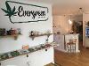 Thumbnail - EvergreenHanf