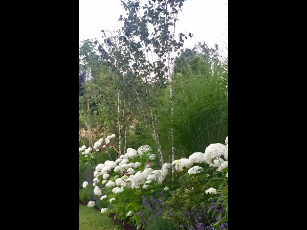 Vorschau - Gartengestaltung im englischen Stil