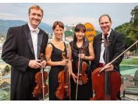 Klassische Musik. Unterschiedliche Ensembles und Musiker für jeden Anlass.
