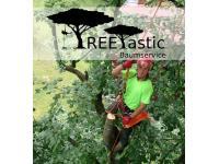 Treetastic Baumservice Koppensteiner Kevin