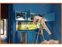ein Aquarium wird eingerichtet