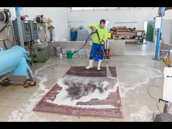 Bio Teppichwäsche Einy